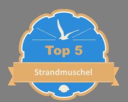 Top 5 – Strandmuschel